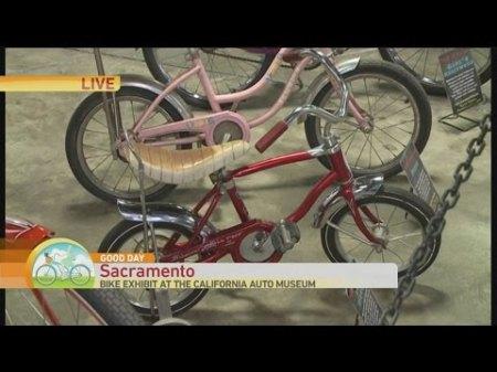 Schwin Bike 1