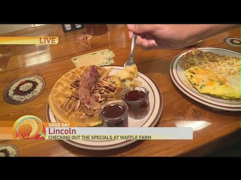 Waffle Farm 1
