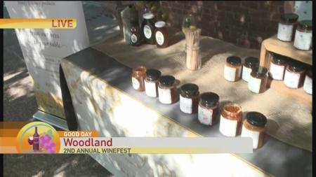 Woodland Wine Fest 1