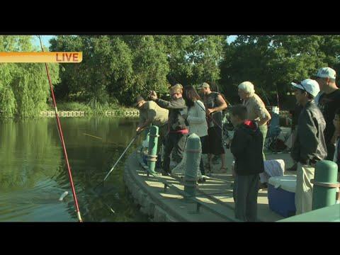 Free Fishing 1