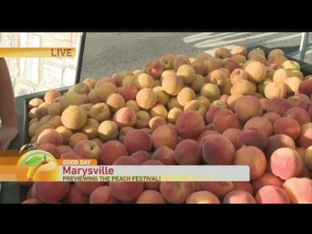 Peach Fest 1