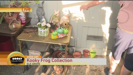 Frog Collection 2