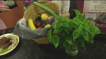 Motherlode Harvest 1