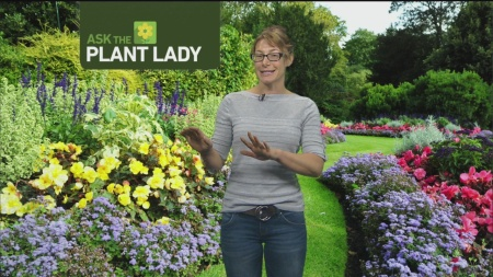 Sept 17 Plant Lady 2